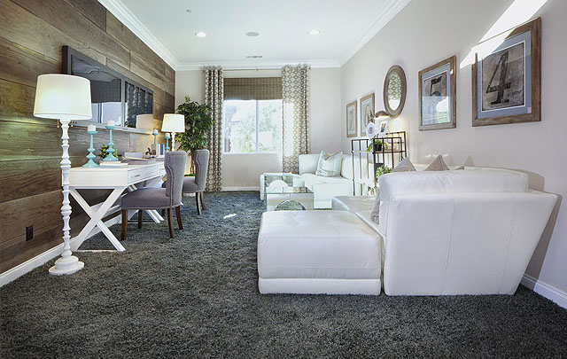 Carpet Empire Plus